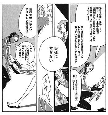 140822ichikawa02